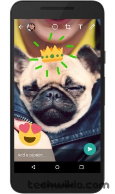 WhatsApp Now Allows Users To Write & Draw On Photos & Videos